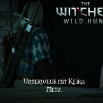 Bild zu Witcher 3: Wild Hunt Folge 18