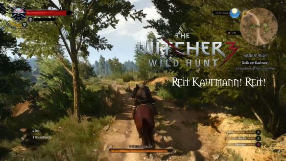 Witcher 3: Wild Hunt – #6 – Reit Kaufmann! Reit!