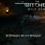 Bild zu Witcher 3: Wild Hunt Folge 19