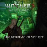 Bild zu Witcher 3: Wild Hunt Folge 22