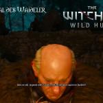 Bild zu Witcher 3: Wild Hunt Folge 34