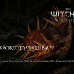Bild zu Witcher 3: Wild Hunt Folge 40