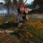Bild zu Witcher 3: Wild Hunt Folge 47