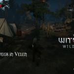 Bild zu Witcher 3: Wild Hunt Folge 48