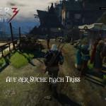 Bild zu Witcher 3: Wild Hunt Folge 53