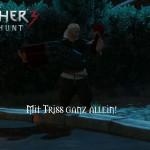Bild zu Witcher 3: Wild Hunt Folge 80