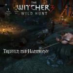 Bild zu Witcher 3: Wild Hunt Folge 102