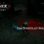 Bild zu Witcher 3: Wild Hunt Folge 118