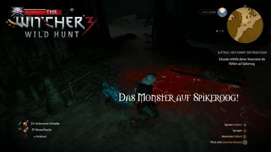 Witcher 3: Wild Hunt – #118 – Das Monster auf Spikeroog!