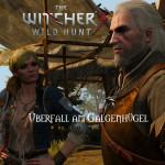 Bild zu Witcher 3: Wild Hunt Folge 125