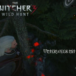 Bild zu Witcher 3: Wild Hunt Folge 130
