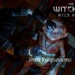 Bild zu Witcher 3: Wild Hunt Folge 132
