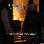 Bild zu Witcher 3: Wild Hunt Folge 141