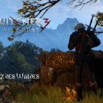 Bild zu Witcher 3: Wild Hunt Folge 148