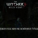 Bild zu Witcher 3: Wild Hunt Folge 158