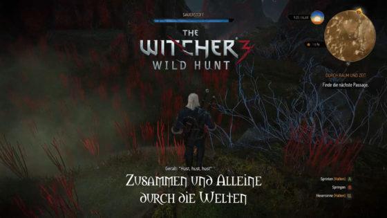 Witcher 3: Wild Hunt – #160 – Zusammen und alleine durch die Welten!